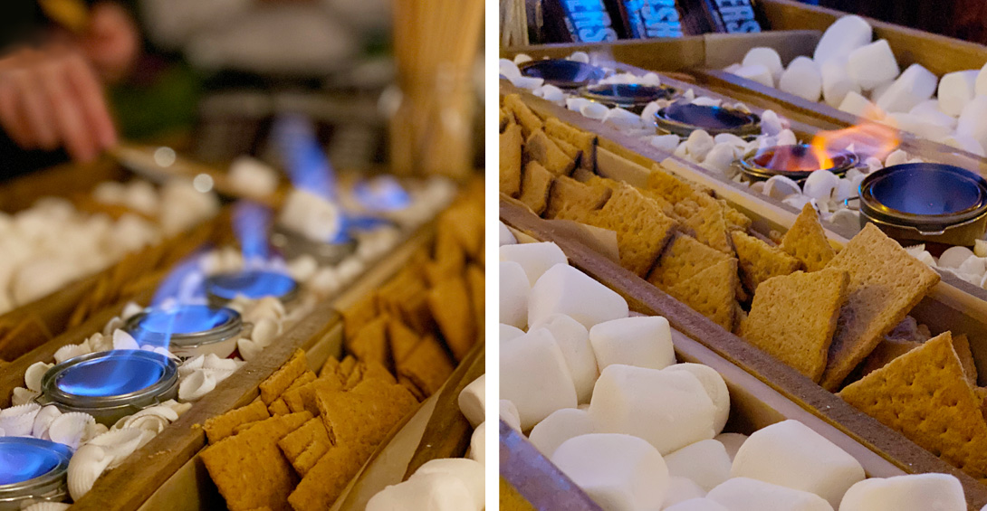 S'mores cart for private party
